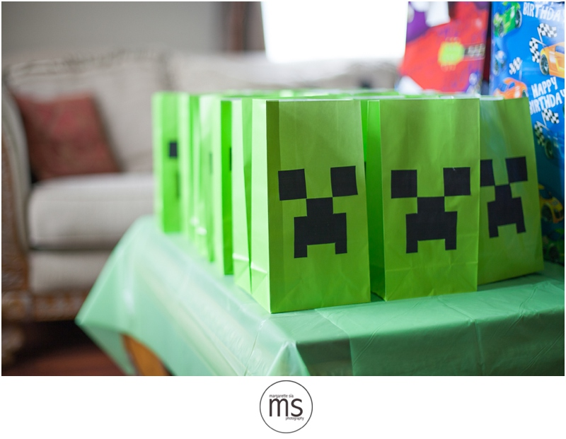 Minecraft Birthday Party_0004