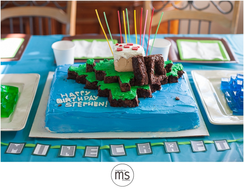 Minecraft Birthday Party_0021