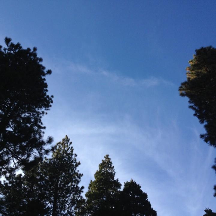 A Little Arrowhead Retreat | Lake Arrowhead, CA